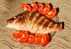 Roasted sea bass on a sand. Home cooking. India Stock Photo