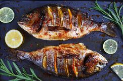 Roasted sea bream fish with lemon slices. Delicious roasted dorado or Gilt-head bream fish with lemon and orange slices, spices, and fresh rosemary on baking stock photography