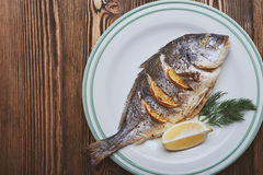 Roasted sea fish Royalty Free Stock Photo