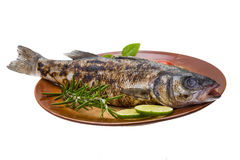 Roasted seabass Royalty Free Stock Photos