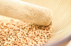 Roasted sesame seeds in Japanese blow Royalty Free Stock Photography