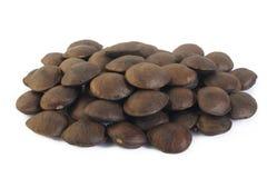 Roasted sesame seeds Stock Photos