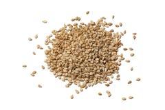 Roasted sesame seeds. On white background royalty free stock photography