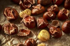 Roasted shell chestnuts served on crumpled paper royalty free stock images