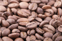 Roasted sidamo coffee beans background. Close up roasted sidamo coffee beans background Royalty Free Stock Image