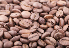 Roasted sidamo coffee beans background Stock Images