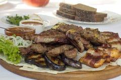 Roasted sorterade kött med tomatsås Arkivbild
