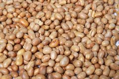 Roasted soya bean  nuts Royalty Free Stock Photo