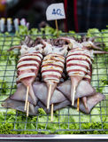 Roasted squid for sale. In local market in thailand Royalty Free Stock Photo
