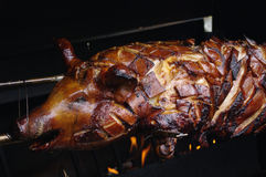 Roasted Suckling pig / piglet Royalty Free Stock Photography