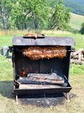 Roasted suckling pig Royalty Free Stock Photo