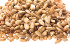 Roasted Sunflower Seeds Stock Image