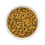 Roasted Sunflower Seeds in a ceramic bowl Royalty Free Stock Image