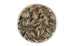 Roasted sunflower seeds Royalty Free Stock Image
