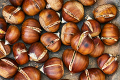 Roasted sweet chestnuts Royalty Free Stock Photos