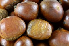 Roasted Sweet Chestnuts Stock Photo