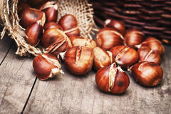 Roasted sweet chestnuts Stock Image