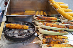 Roasted Sweet Corn on the Grill. Roasted Sweet Yellow Corn on the Grill Stock Photos
