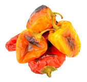 Roasted Sweet Peppers Royalty Free Stock Photography