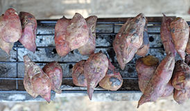 Roasted sweet potato Stock Images