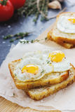 Roasted toasts with quail eggs and herbs. On paper for baking Stock Image