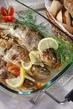 Roasted  trout Royalty Free Stock Image