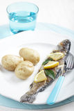 Roasted trout Stock Images