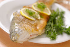 Roasted trout royalty free stock photos