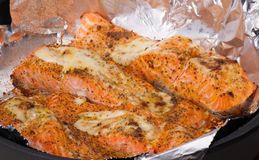 Roasted Trout Fillet. Grilled Fish Stock Photography