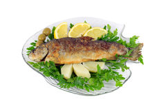 Roasted trout on the fish plate with parsley, lemon, potato and olives Royalty Free Stock Images