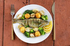Roasted trout fish with vegetables and lemon Royalty Free Stock Photos
