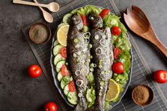 Roasted trout with vegetable royalty free stock images