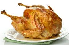 Roasted turkey Royalty Free Stock Photography