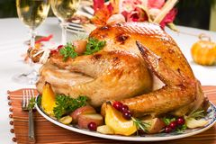 Roasted turkey Royalty Free Stock Photo