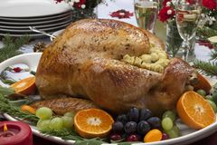 Roasted Turkey for Christmas Dinner. Roasted herb rubbed turkey garnished with fresh grapes, oranges, and cranberry is ready for Christmas dinner. Ornaments royalty free stock photos