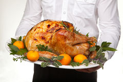 Roasted turkey feast Royalty Free Stock Image