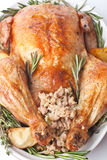 Roasted Turkey with Rosemary and Stuffing Stock Photography