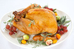 Roasted Turkey on tray over white Stock Photography