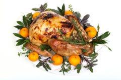 Roasted turkey on white Stock Photos
