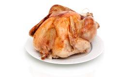 Roasted turkey on white background. Whole roasted turkey on white background Stock Photos