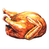 Roasted turkey on white background Royalty Free Stock Images