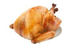 Roasted Turkey on white. Mouth-watering golden roasted turkey over white background, no garnish Stock Photos