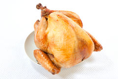 Roasted Turkey on white. Mouth-watering golden roasted turkey over white background, no garnish Royalty Free Stock Photo