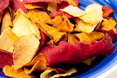 Roasted Vegetable Chips Royalty Free Stock Image