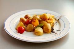 Roasted Vegetables. Fresh roasted vegetables on plate Stock Photos