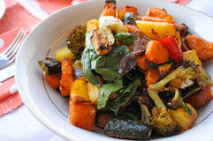 Roasted vegetables salad Royalty Free Stock Photos