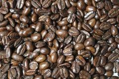 Roasted Whole Bean Coffee Stock Photos
