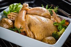 Roasted whole chicken. With herbs and spices in the oven Royalty Free Stock Photography