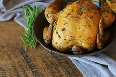 Free Roasted Whole Chicken Or Turkey For Celebration And Holiday. Christmas, Thanksgiving, New Year`s Eve Dinner Stock Photo - 163263520