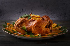 Roasted whole chicken with parsley and oranges. Royalty Free Stock Photos
